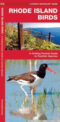 Rhode Island Birds (Pocket Naturalist Series): An Introduction to Familiar Species