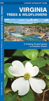 Virginia Trees & Wildflowers: An Introduction to Familiar Species (Pocket Naturalist Series)