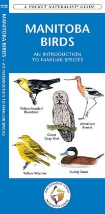 Manitoba Birds: An Introduction to Familiar Species