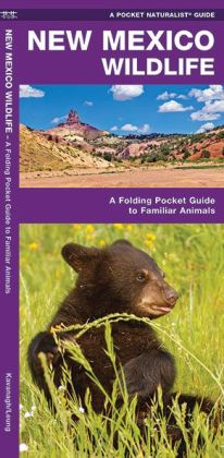 Pocket Naturalist Guide to New Mexico Wildlife: An Introduction to Familiar Species