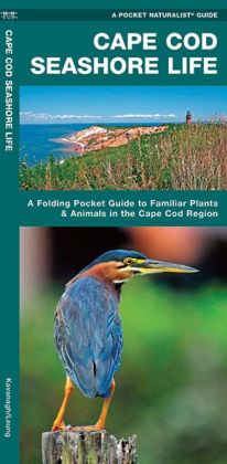 Cape Cod Seashore Life: An Introduction to Familiar Plants and Animals in the Cape Cod Region (Pocket Naturalist Series)