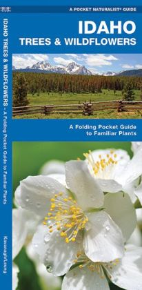 Idaho Trees & Wildflowers: An Introduction to Familiar Species