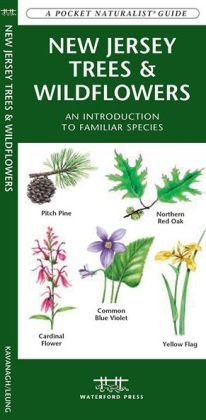 New Jersey Trees and Wildflowers: An Introduction to Familiar Species (Pocket Naturalist - Waterford Press Series)