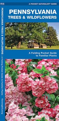 Pennsylvania Trees and Wildflowers: An Introduction to Familiar Species (Pocket Naturalist - Waterford Press)