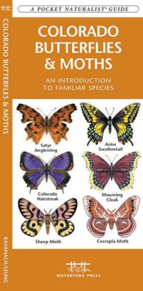 Colorado Butterflies and Moths: An Introduction to Familiar Species (Pocket Naturalist Series)