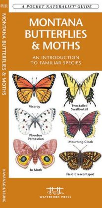 Montana Butterflies and Moths: An Introduction to Familiar Species (Pocket Naturalist Series)