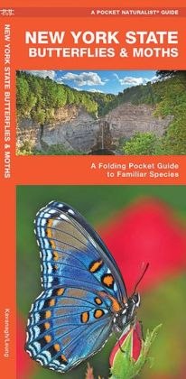New York State Butterflies and Moths: An Introduction to Familiar Species (Pocket Naturalist Series)
