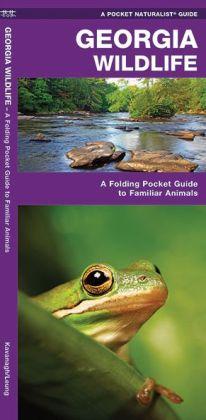 Georgia Wildlife: An Introduction to Familiar Species