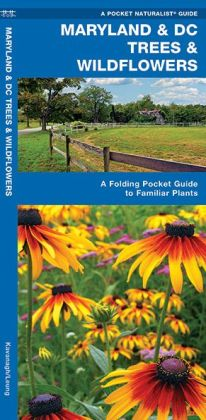 Maryland & DC Trees & Wildflowers: An Introduction to Familiar Species