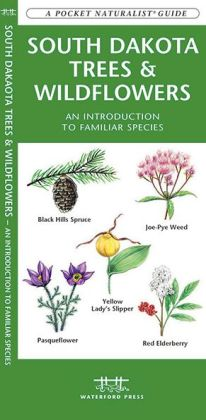 South Dakota Trees and Wildflowers: An Introduction to Familiar Species