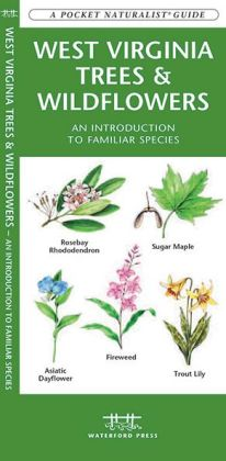 West Virginia Trees and Wildflowers: An Introduction to Familiar Species
