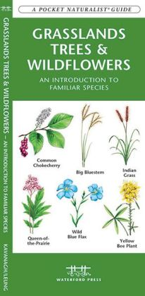 Grasslands Trees and Wildflowers: An Introduction to Familiar Species Found in Prairie Grasslands