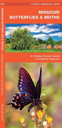 Missouri Butterflies and Moths: An Introduction to Familiar Species