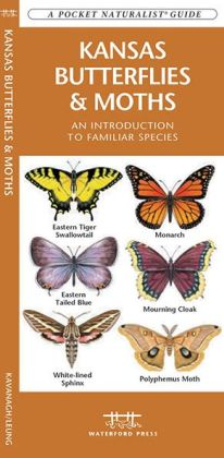 Kansas Butterflies and Moths: An Introduction to Familiar Species