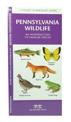 Pennsylvania Wildlife: An Introduction to Familiar Species