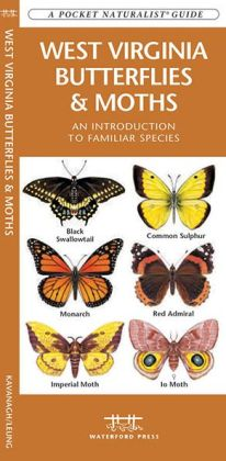 West Virginia Butterflies and Moths: An Introduction to Familiar Species