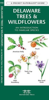 Delaware Trees & Wildflowers: An Introduction to Familiar Species