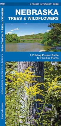 Nebraska Trees & Wildflowers: An Introduction to Familiar Species