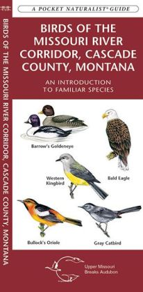 Birds of the Missouri River Corridor, Cascade County, Montana: An Introduction to Familiar Species