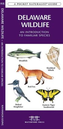 Delaware Wildlife: An Introduction to Familiar Species