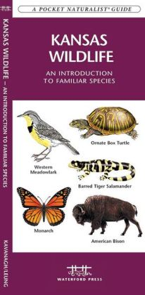 Kansas Wildlife: An Introduction to Familiar Species