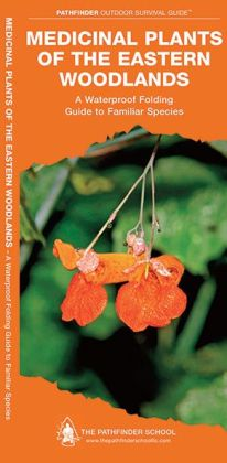 Medicinal and Other Useful Plants of the Eastern Woodlands: A Folding Pocket Guide to Familiar Species