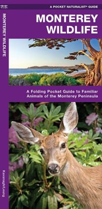 Monterey Wildlife: A Folding Pocket Guide to Familiar Species of the Monterey Peninsula
