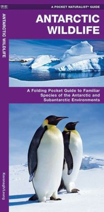 Antarctic Wildlife: A Folding Pocket Guide to Familiar Species of the Antarctic Continent and Subantarctic Environments