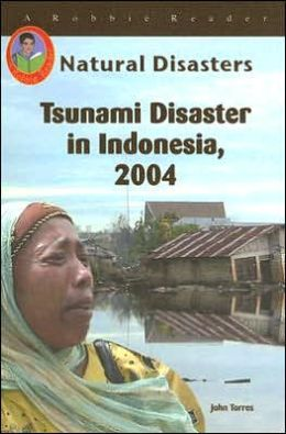 Tsunami Disaster in Indonesia 2004