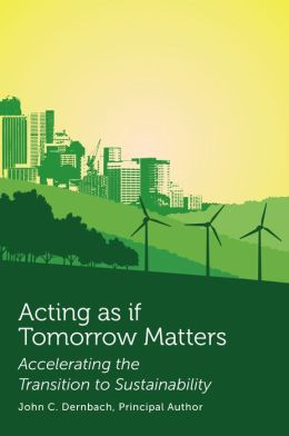 Acting as if Tomorrow Matters: Accelerating the Transition to Sustainability
