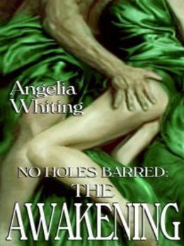 The Awakening [No Holes Barred Book 3]