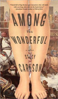 Among the Wonderful: A Novel