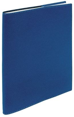 2013 WEEKLY DESK BLUE STUDENT PLANNER ''SCHOLAR'' BY QUO VADIS