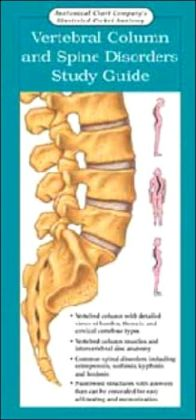 Anatomical Chart Company's Illustrated Pocket Anatomy: Vertebral Column and Spine Disorders Study Guide