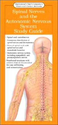 Anatomical Chart Company's Illustrated Pocket Anatomy: Spinal Nerves and the Autonomic Nervous System Study Guide