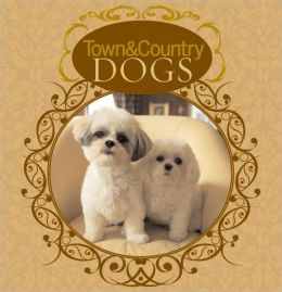 Town & Country Dogs