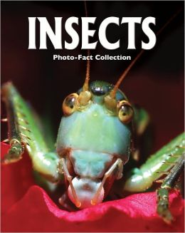 Insects (Photo-Fact Collection Series)
