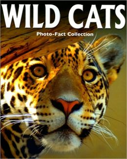 Wild Cats (Photo-Fact Collection Series)