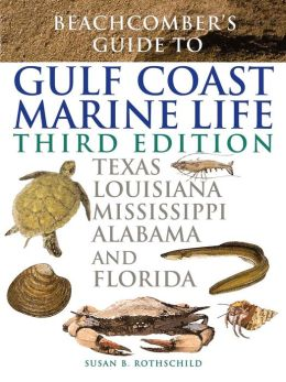 Beachcomber's Guide To Gulf Coast Marine Life