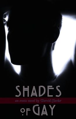 Shades of Gay: An Erotic Novel