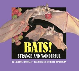 Bats!: Strange and Wonderful