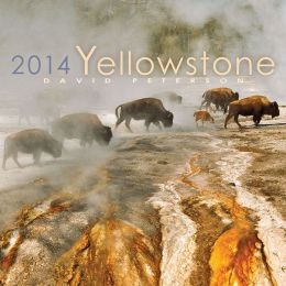 2014 Yellowstone Wall Calendar