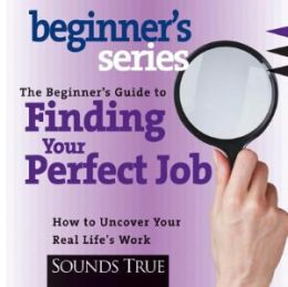 The Beginner's Guide to Finding Your Perfect Job (Unabridged Compact Disc)