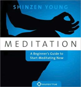 Meditation: A Beginner's Guide to Start Meditating Now
