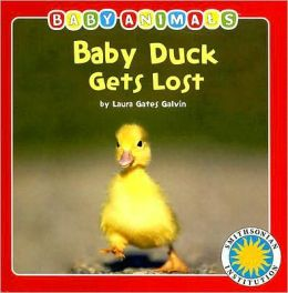 Baby Duck Gets Lost
