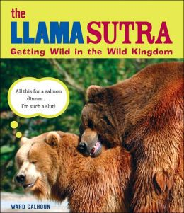 Llama Sutra: Getting Wild in the Wild Kingdom