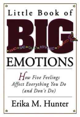 Little Book of Big Emotions: The Five Feelings that Affect Everything You Do (And Don't Do)