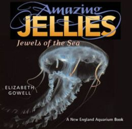 Amazing Jellies: Jewels of the Sea