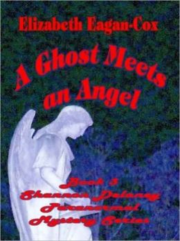 A Ghost Meets an Angel [Shannon Delaney Paranormal Mystery Series, Vol. 3]