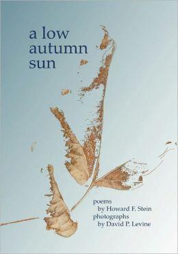 A Low Autumn Sun